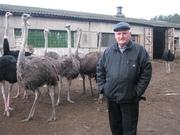 Школьный туризм на страусиную ферму в Мозыре
