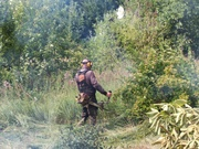 Покос Травы бурьяна и кустарников